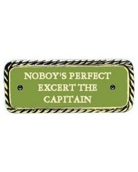 Plaque bronze ''Nobody's perfect''