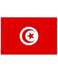 Pavillon Tunisie 30 x 45 cm